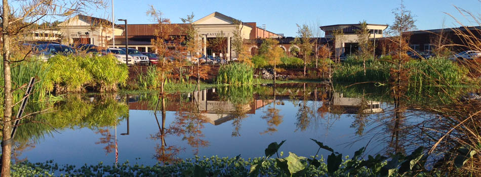 Stormwater Management Basin : Managing stormwater in new england with low impact