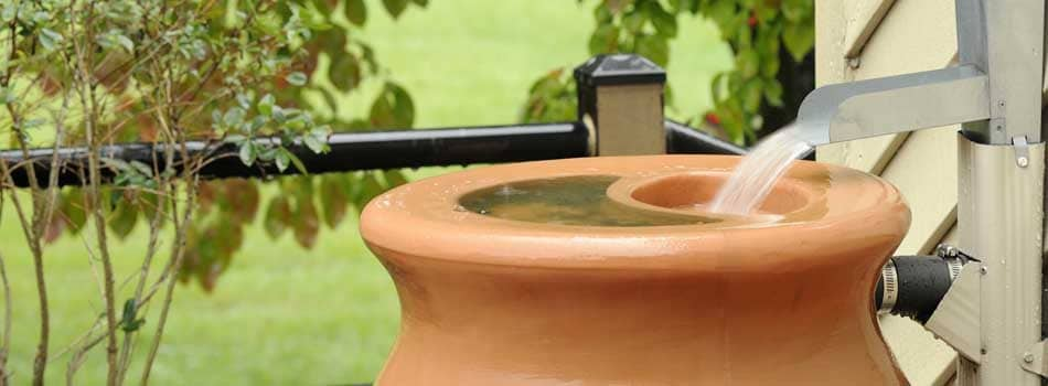 harvest_rainwater_rain_barrel