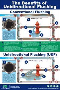 UDF-infographic