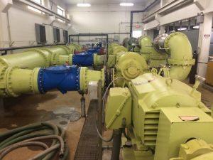 Hemlock Pumps