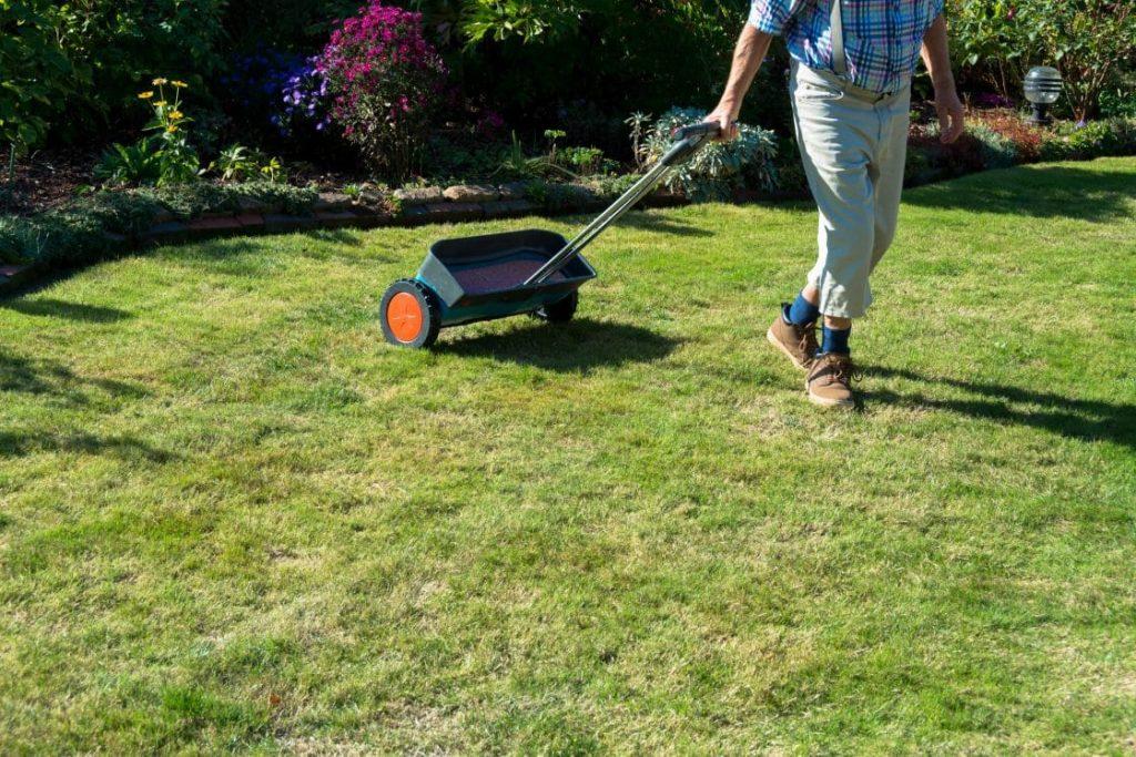 man fertilizing lawn