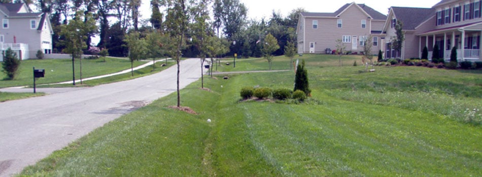 grassed_swale_stormwater