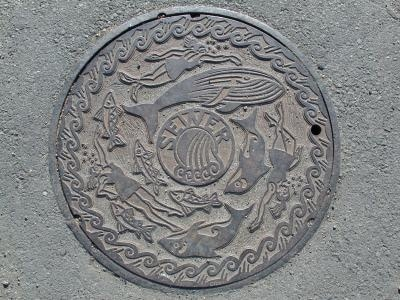 Washington_Seattle_gasworks_park_manhole_cover