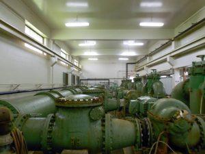Hemlocks Pumps